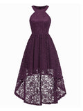 Halter Neck Lace Dress Stylish Swing Dress