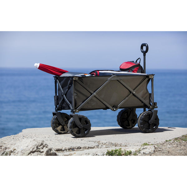 Adventure Wagon Beach Cart 1