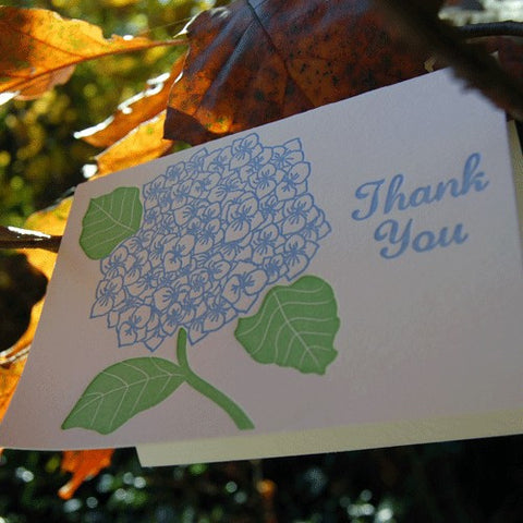 Hydrangea Thank You  SET of 6