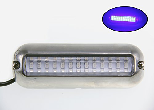 Pactrade Marine Pontoon Boat LED Underwater Light S.S 316 Housing 416 lm, Blue - onlinesportsmall