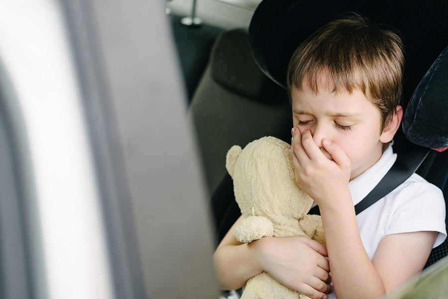Top Tips For Preventing Motion Sickness