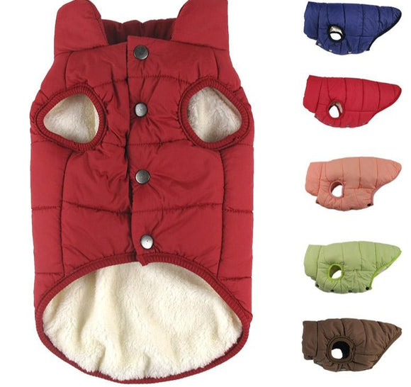 Winter Cotton-padded Coat