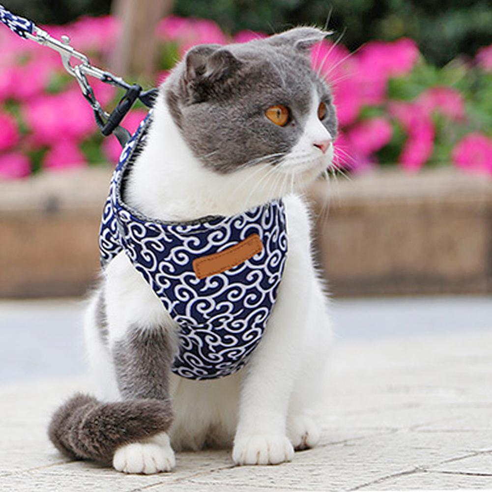Cat Harness + Leash Set - PetsDoo
