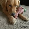 Squeaky Toy For Pets - PetsDoo