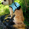 Fashion Harness Bag - PetsDoo