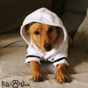 Cute Dog Pajamas Clothes - PetsDoo