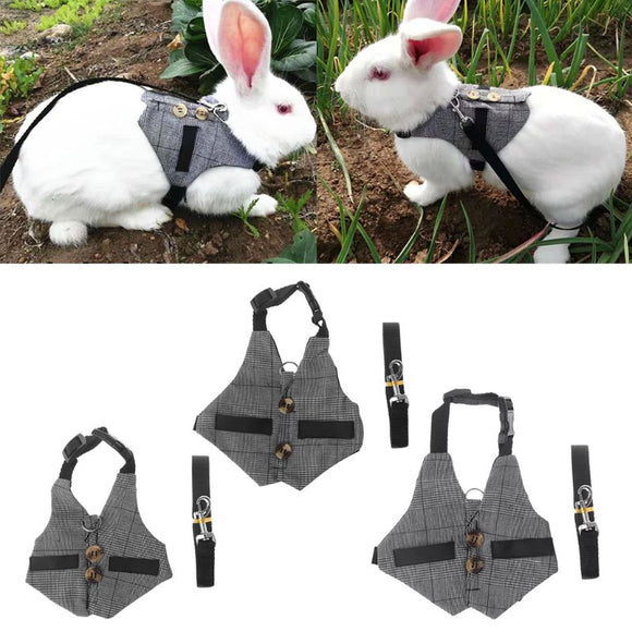Multipurpose-Rabbit-Harness-Leash