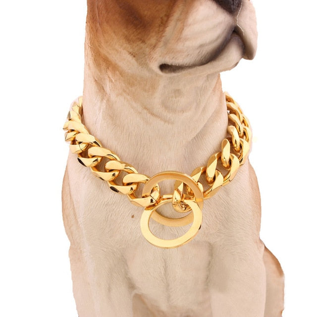 Chishock- Gold Chain Pet Safety Collar - PetsDoo