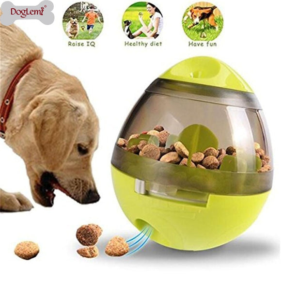 Dog-Playing-Food-Dispenser