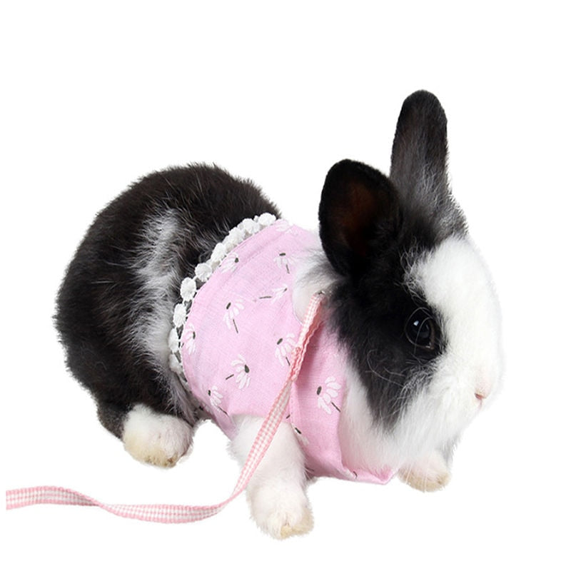 Comfortable Rabbit Strap Leash - PetsDoo