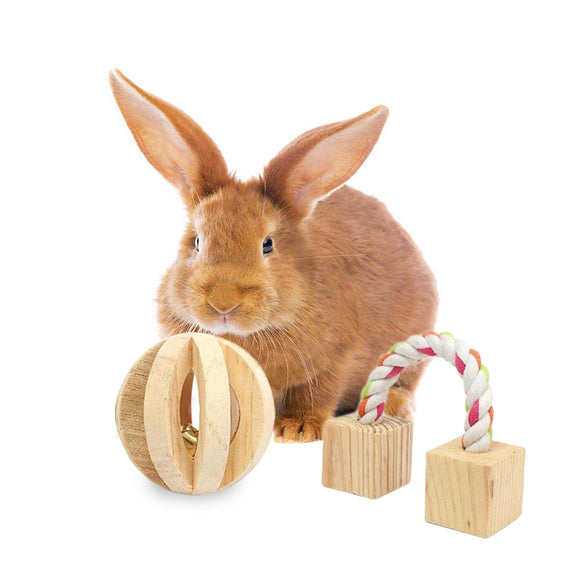 Wooden Chew Toys