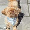 Pet Reflective Bandana High Visibility Dog Scarf - PetsDoo