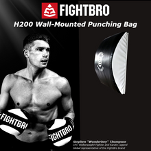 Load image into Gallery viewer, H200 Wall-Mounted Punching Bag
