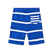 Andy & Evan Shorts Boys Blue Striped Shorts