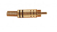 Roxtone RCA Plug gold black band