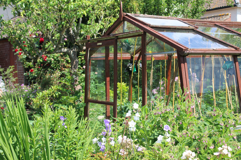 Greenhouse and Nursery