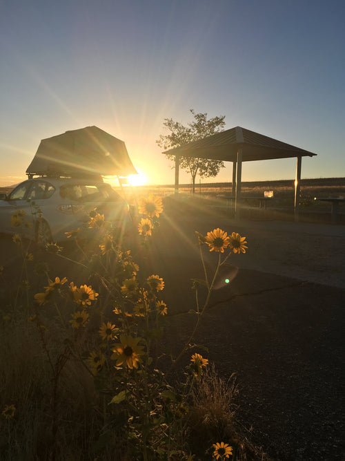 Sunrise at Bridger Bay campground by the Great Salt Lake, UT (Ayer 2) Gallery Item