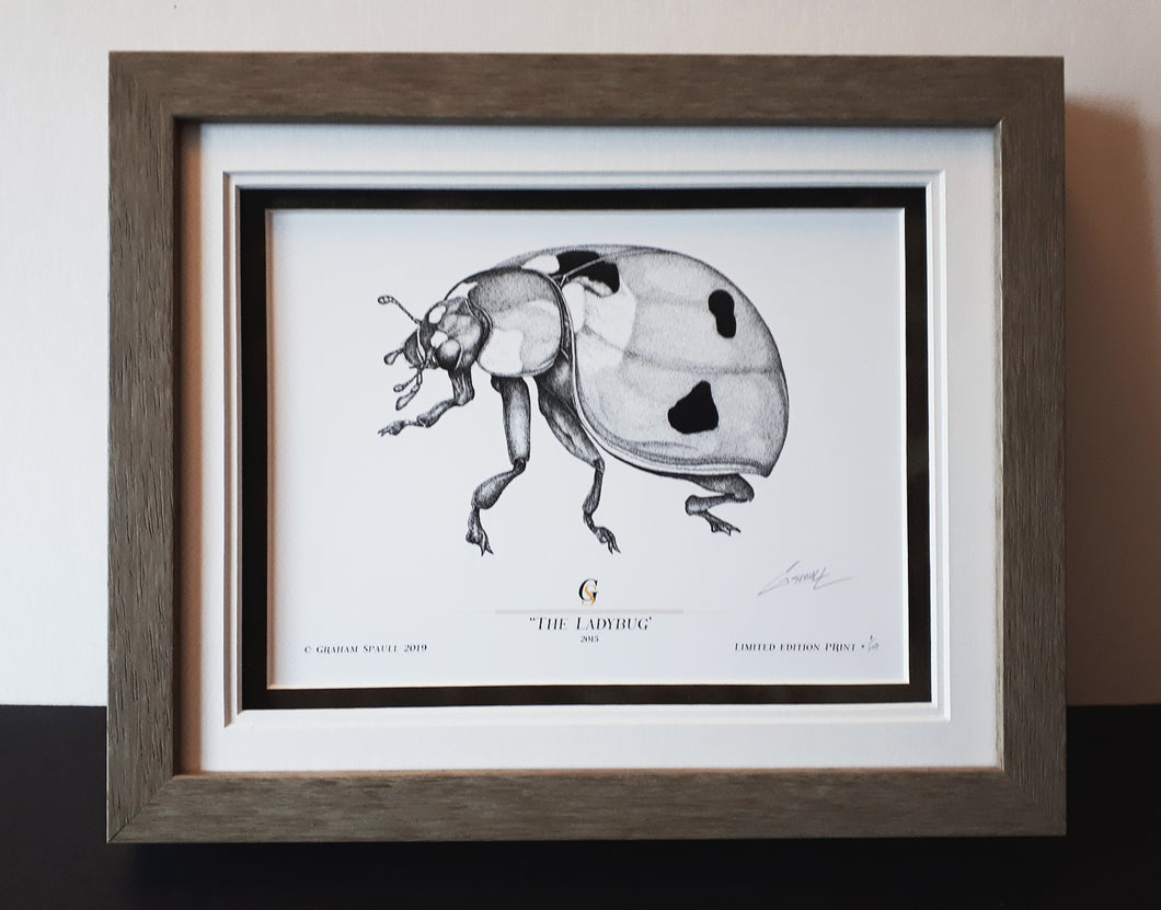 The Ladybug (#1 of 100 (5.5'' x 7.5'') Framed Edition