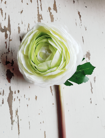 Ranunuculus Single Stem Spray