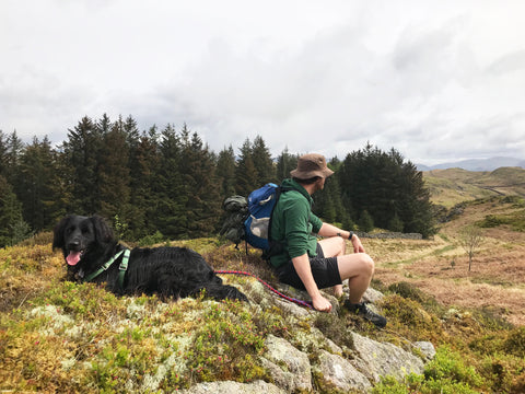 A dog and a man sitting on a rock looking at the view in the Lake District