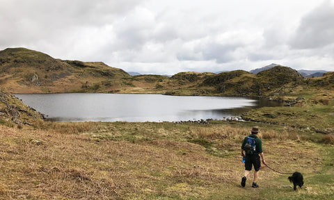 A tarn in the Lake District
