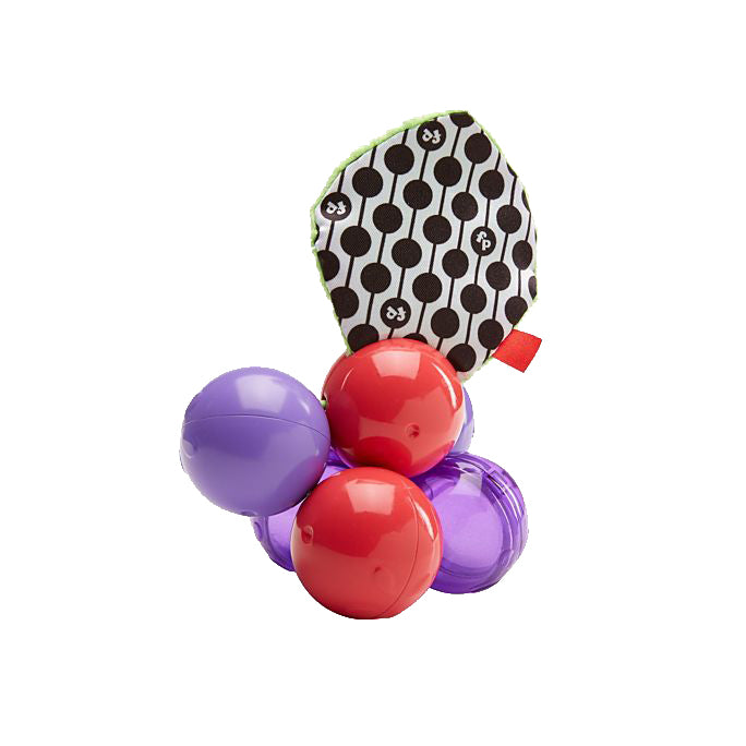 Butterfly7: Fisher-Price  Development Toy-Twist and Turn Grapes (DRD83)