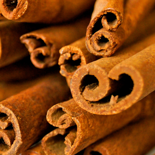Photograph of sticks of cinnamon