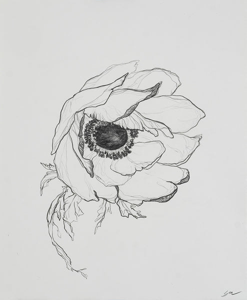 Sarah Mulder Art Anemone Study #6 | Available at artfully.ca