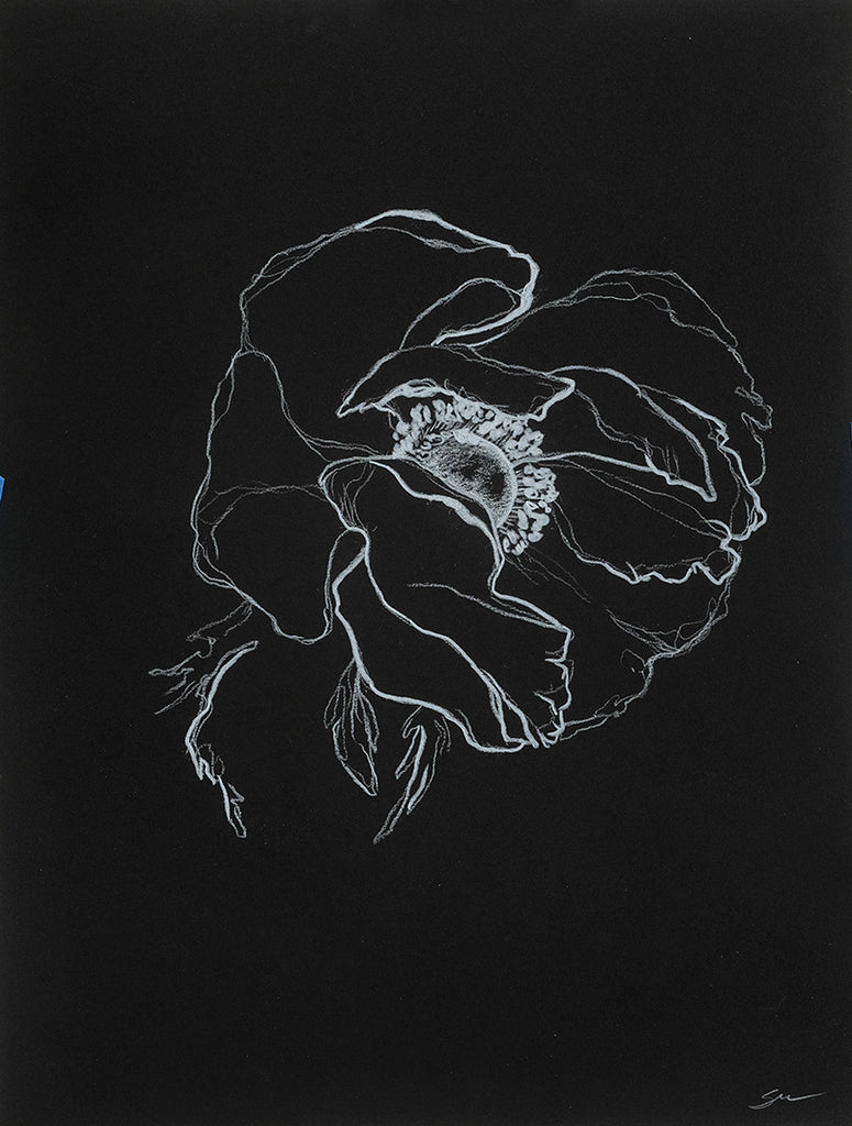 Sarah Mulder Art Anemone Study #2 | Available at artfully.ca