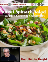 Load image into Gallery viewer, Sweet Spinach Blue Cheese Salad with Cranberries