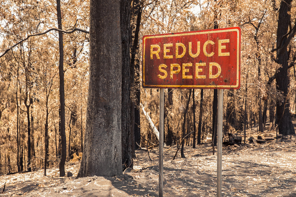 Australian bush fires on the south east coast of NSW burnt road sign