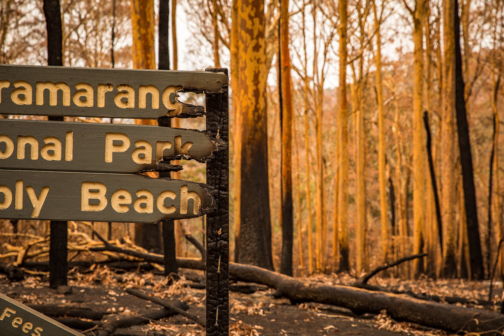 Australian bush fires on the south east coast of NSW burnt national park sign