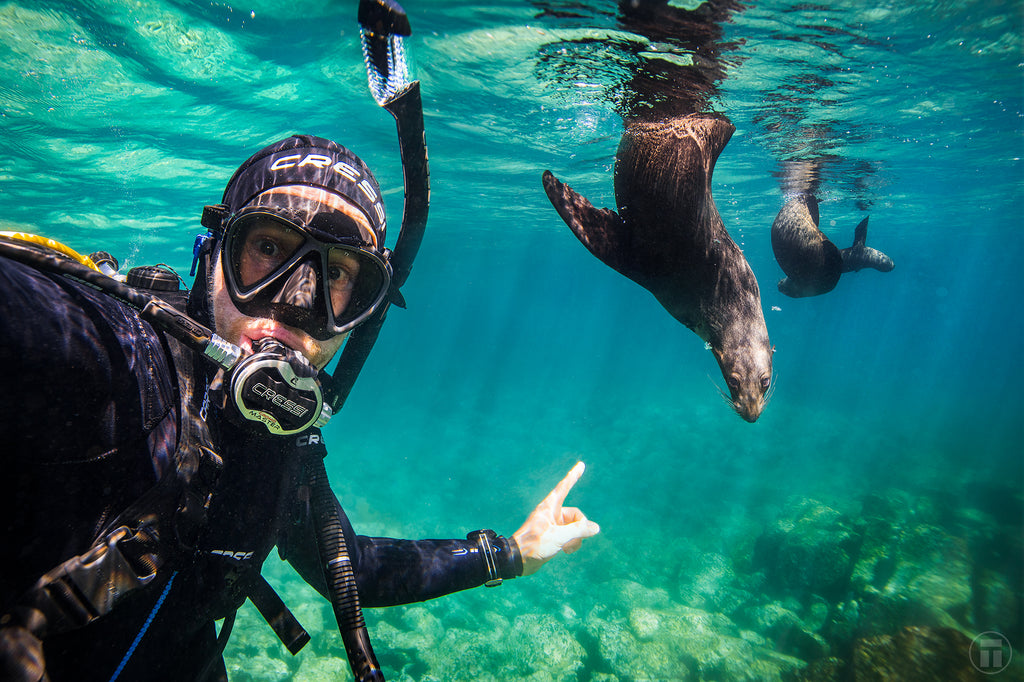 Thurston on Cressi Scuba with the seals of Montague Island