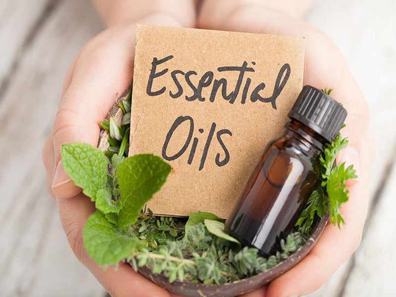 Essential Oils: How Much Do You Know About These Incredibly Potent Oils