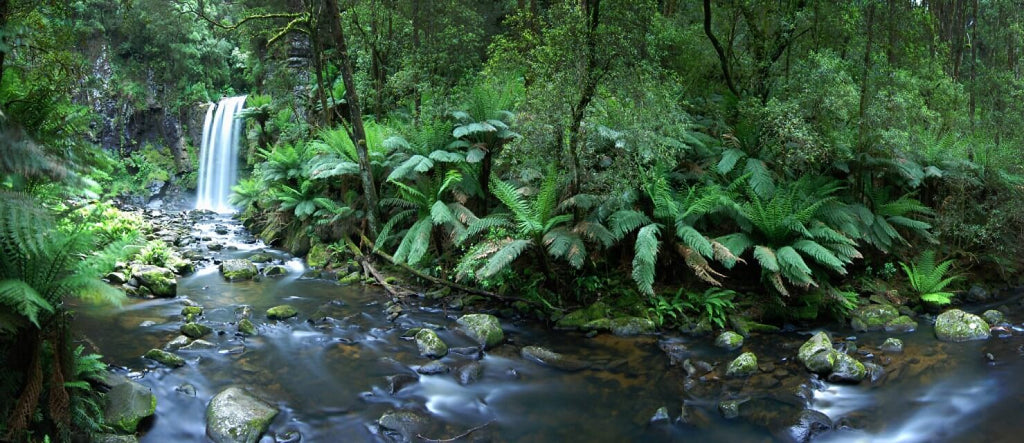 great otway national park // mahabis journal