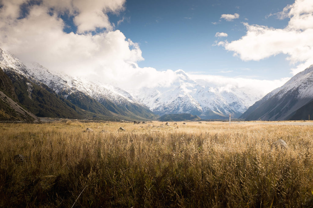 mt cook // mahabis journal