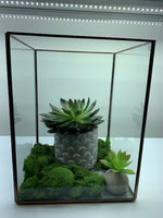 Load image into Gallery viewer, Antique Style Terrarium/Display Boxes - 3 Sizes