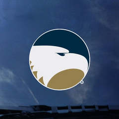 Academic Eagle Decal