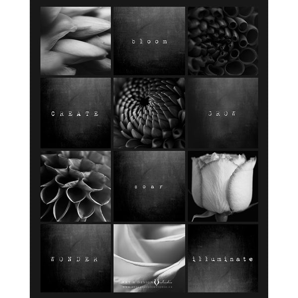 Black & White Flower Photography Series personalized art print wall d_cor inspiredartprints inspired art prints custom photo gifts