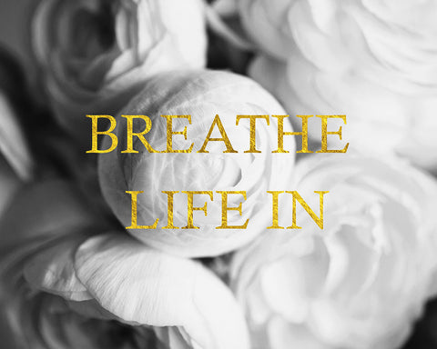 Breathe Life In - Inspirational Black White Flower Photo with Faux Gold Foil