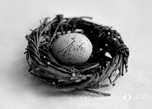 Baby Art Personalized Nest with Name Print