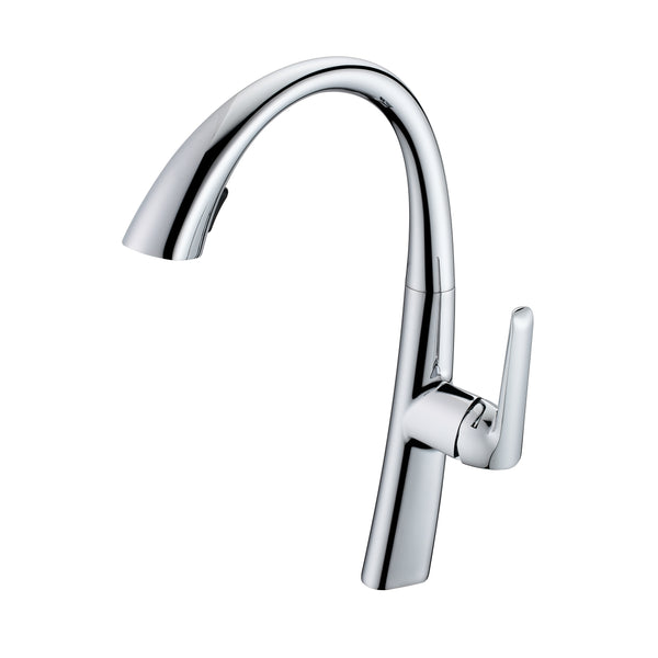 BAI 0665 Single Handle Kitchen Faucet with Pull Down System in Polished Chrome Finish