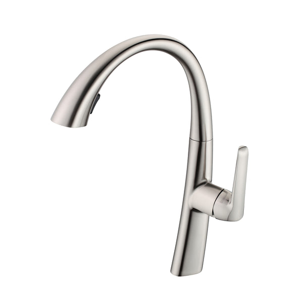 BAI 0666 Single Handle Kitchen Faucet with Pull Down System in Brushed Finish