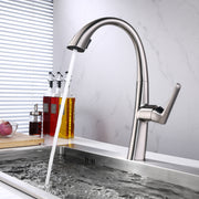 BAI 0659 Single Handle Kitchen Faucet with Pull Down System in Brushed Finish