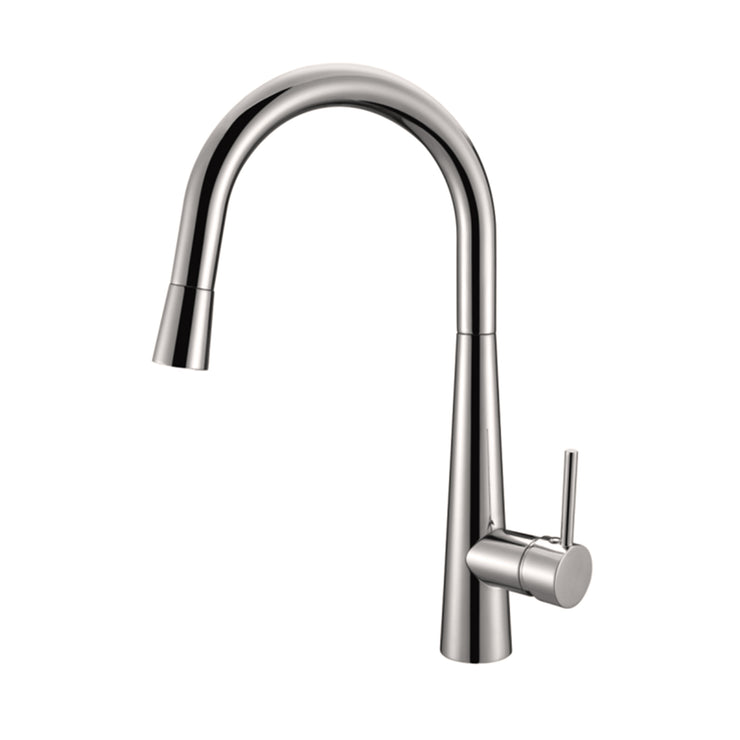 BAI 0670 Single Handle Kitchen Faucet with Pull Down System in Brushed Finish