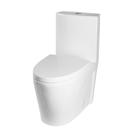 BAI 1011 Contemporary Toilet – One Piece Single Flush (1.2 GPF) with Soft-Close Seat