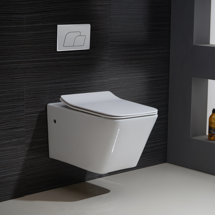 BAI 1015 Contemporary Wall Hung Toilet & Carrier Tank – Dual Flush with Soft-Close Seat