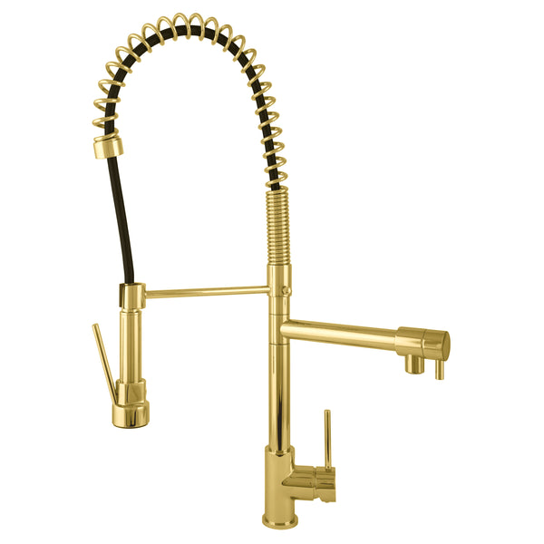 BAI 2613 Single Handle Kitchen Faucet with 2 Spouts and Pull-Down Spray in Brushed Gold Finish