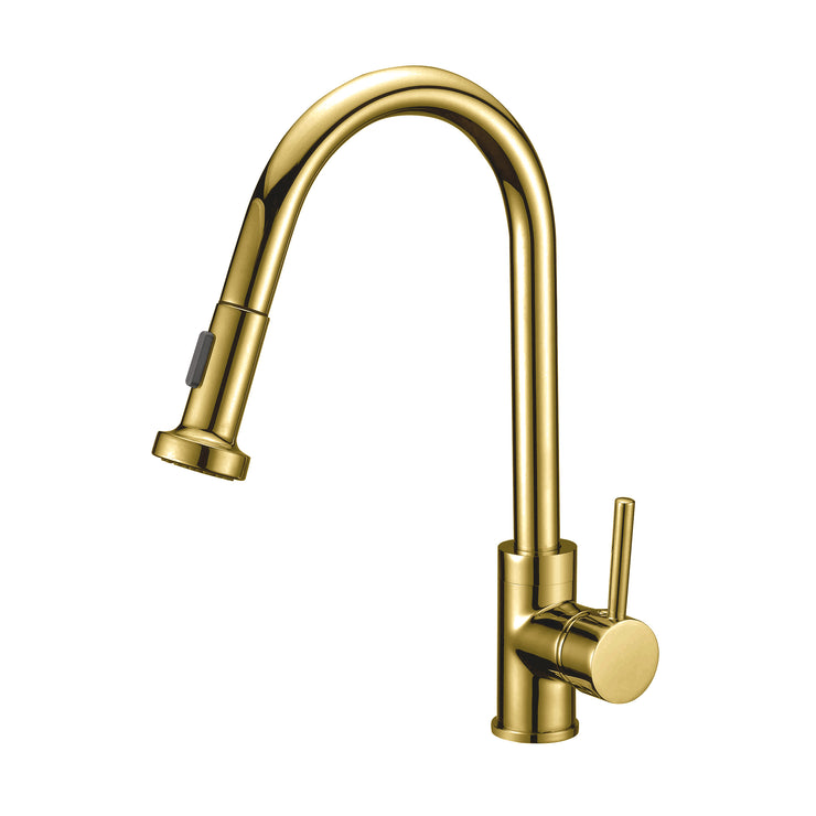 BAI 2617 Single Handle Kitchen Faucet with Pull Down System in Brushed Gold Finish