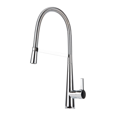 BAI 0607 Single Handle Kitchen Faucet With Pull-Down Spray